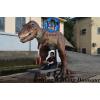 独家供应电子仿真恐龙 机械恐龙骑行霸王龙生产制作