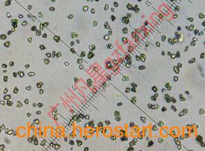 供应W7金刚石微粉3000目M4-8