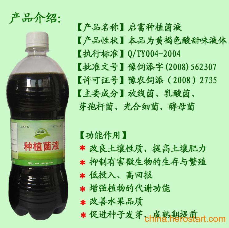 供应黄豆芽绿豆芽香椿芽等无公害芽菜类种植专用EM菌液