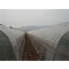 供应大兴区大棚钢管,天津海富通,大棚钢管价