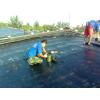 供应南京烫房顶 房顶漏水怎么办 屋面防水做法 房屋漏水怎么办