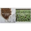 供应蛭石-育苗蛭石-栽培蛭石-园艺蛭石-土壤改良蛭石