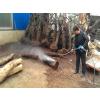供应山东根雕除树皮高压清洗机哪家质量好?