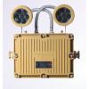 供应RZJ(BAJ)52系列防爆应急灯(IIB、IIC)