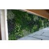 供应高仿真室内室外植物墙 人造立体绿化植物墙 垂直绿化 植物墙工程