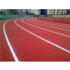 供应上海硅pu球场|广州帝森|山东硅pu球场