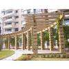 供应廊架花箱栈道凉亭等木结构制品就选首佳木结构