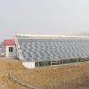 光伏生态农业大棚厂家|光伏生态农业大棚建设-大棚建设