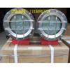 供应DGY12/110LX(A)矿用隔爆型照明信号灯