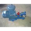 供应TCB铜齿轮泵,耐腐蚀泵,耐磨泵,甲醇泵,化工泵,,汽油泵