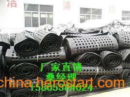 供应江西【聚乙烯排水板】滤水塑料排水板厂家