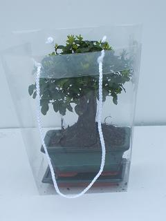 供应透明盆栽鲜花袋手提PP扇形盆栽袋