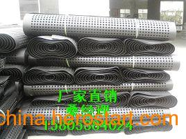 供应(专业生产蓄排水板的厂家)