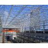 临朐钢结构厂房|一流的钢结构厂房建筑哪里有