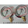 供应ASK压力表 BG1/2-100x25MPa-GR11 耐震压力表 BKS-G1/2-100x25MPa-GR11 防振型压力表 BS1/2-100x25MPa-GR11