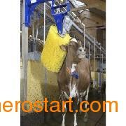 供应纺织机械毛刷——郑州高性价纺织机械毛刷批售