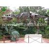 供应自贡仿生恐龙 恐龙化石 恐龙骨架