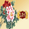 济南红霖联合实业-最专业的农副特产包装设计公司,是您最佳选择