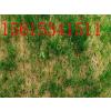 供应椰丝环保草毯护坡原理