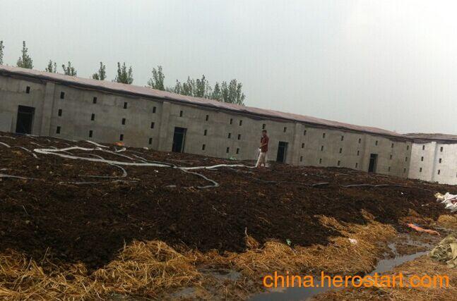 利源农牧工程有限公司供应双孢菇种植棚