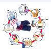 供应多频段RFID物联网智能物联网手机CM390A