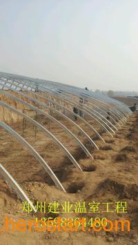 唐河县农业种植建设日光温室郑州大棚骨架几字型钢安装供应