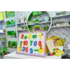供应2015年中国玩具展《2015年上海中国玩具展》2015展会