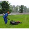 供应草坪割草机手推自走式草坪机