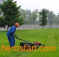 供应播种机拖拉机播种机汽油播种机