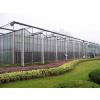 供应玻璃温室大棚