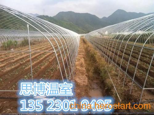供应郑州葡萄大棚建造郑州草莓大棚价格