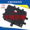 供应全国销售接线箱,BXJ防爆接线箱,防爆防腐接线箱制造厂家