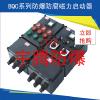 供应BQD8050防爆防腐电磁起动器 防爆防腐起动器