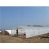 供应河南智能蔬菜大棚的建造与用材