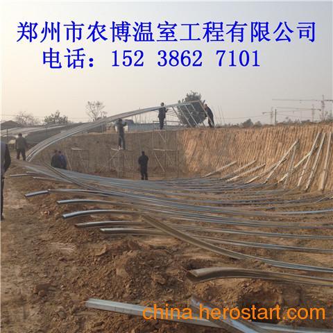 供应温室大棚的造价、建一亩地大棚需要多少钱