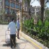 南宁小区绿化工程哪家好 柳州小区绿化工程