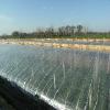 含甲壳素中量元素水溶肥料|中量元素水溶肥料|中量元素水溶肥料报价