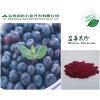 供应蓝莓果粉