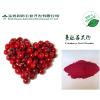 供应优质蔓越莓粉