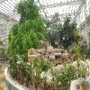 滨州园林绿化——想要无病虫害的园林绿化就来山东苏氏园林