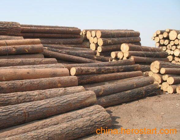 供应批发国内杉木各种规格齐全