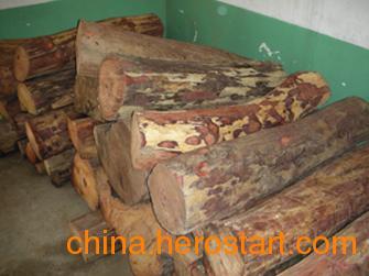 供应批发海南黄花梨原木各种规格齐全