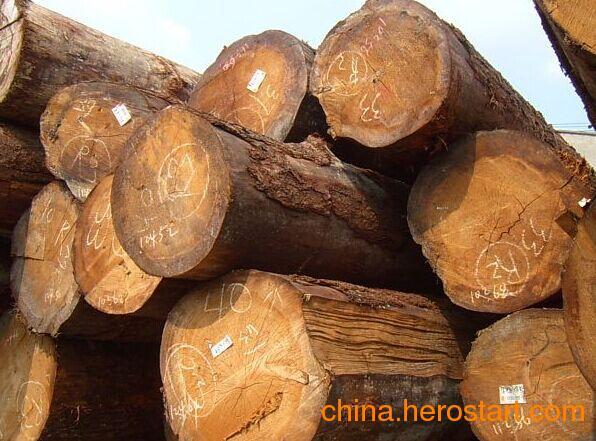 供应批发国内铁杉原木各种规格齐全