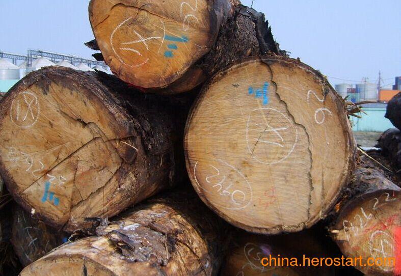 供应国内云杉原木各种规格齐全