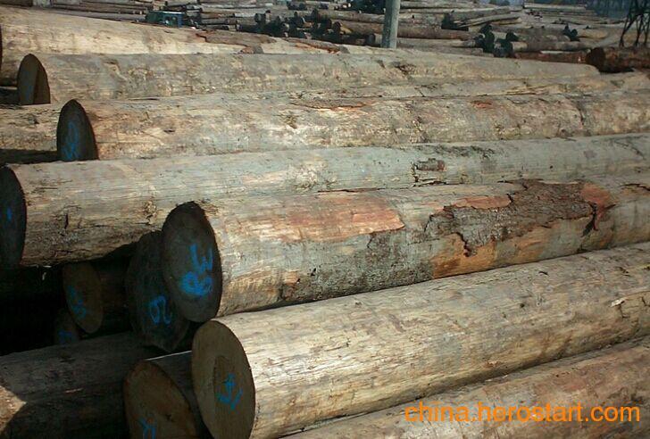 供应国内赤松原木 各种规格齐全