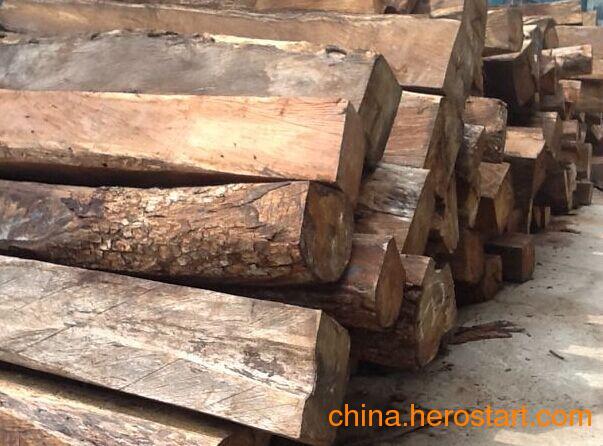 供应安哥拉紫檀原木各种规格齐全