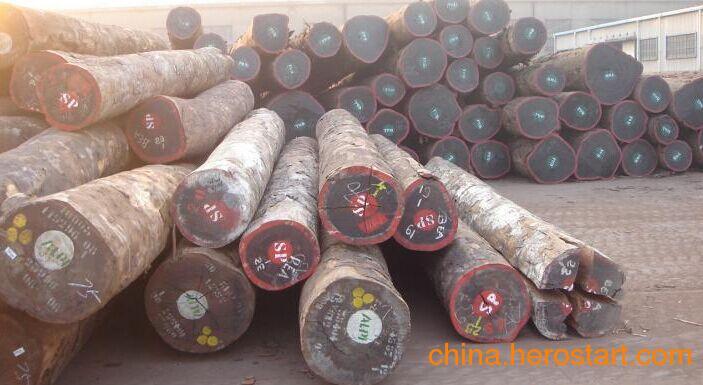 供应非洲巴花原木 各种规格齐全