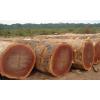 供应非洲沙比利原木各种规格齐全