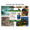 供应水产em菌制剂养虾技术