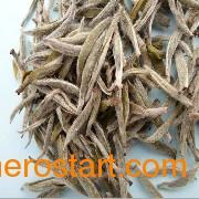 荒野白茶-知名的老白茶批发商|优质的福鼎白茶